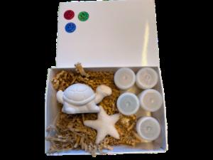 Keramik zuhausemalen.de | Geschenk – Set Schildkröte Geschenk-Boxen